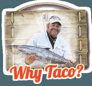 Why-Taco