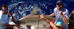 Welcome to Taco's Hooked Up Sportfishing