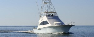 Taco's Hooked Up Sportfishing in Ft. Lauderdale
