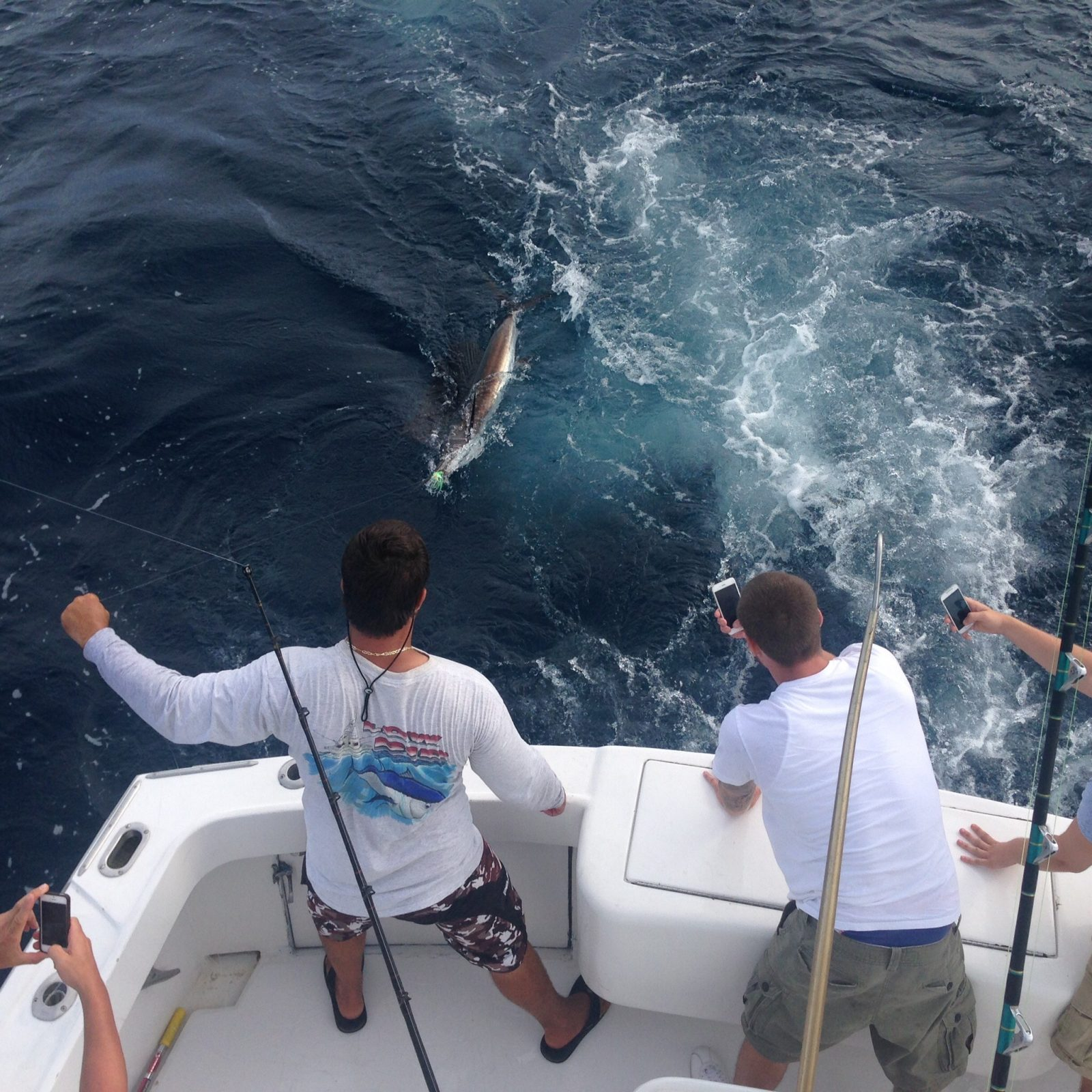 Catching Ted and friends sailfish and Wahoo